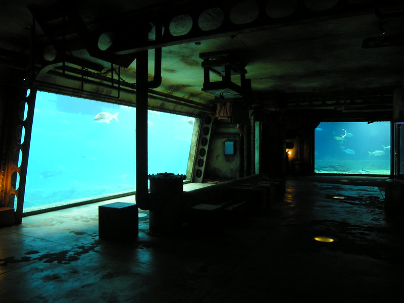 level-43-cc.jpg